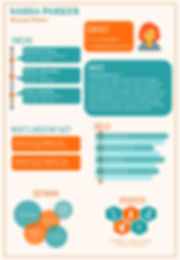 Professional Info-graphic Resume Sample