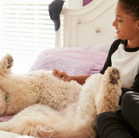 Las mascotas ayudan a las personas a sobrellevar el aislamiento