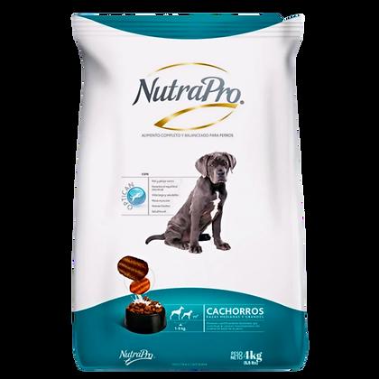 NutraPro Cachorro Raza Mediana y Grande 2 Kg