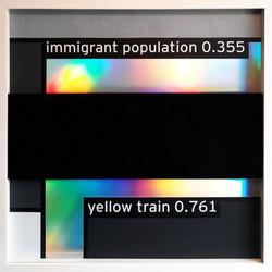 IMMIGRANT POPULATION 0.355
