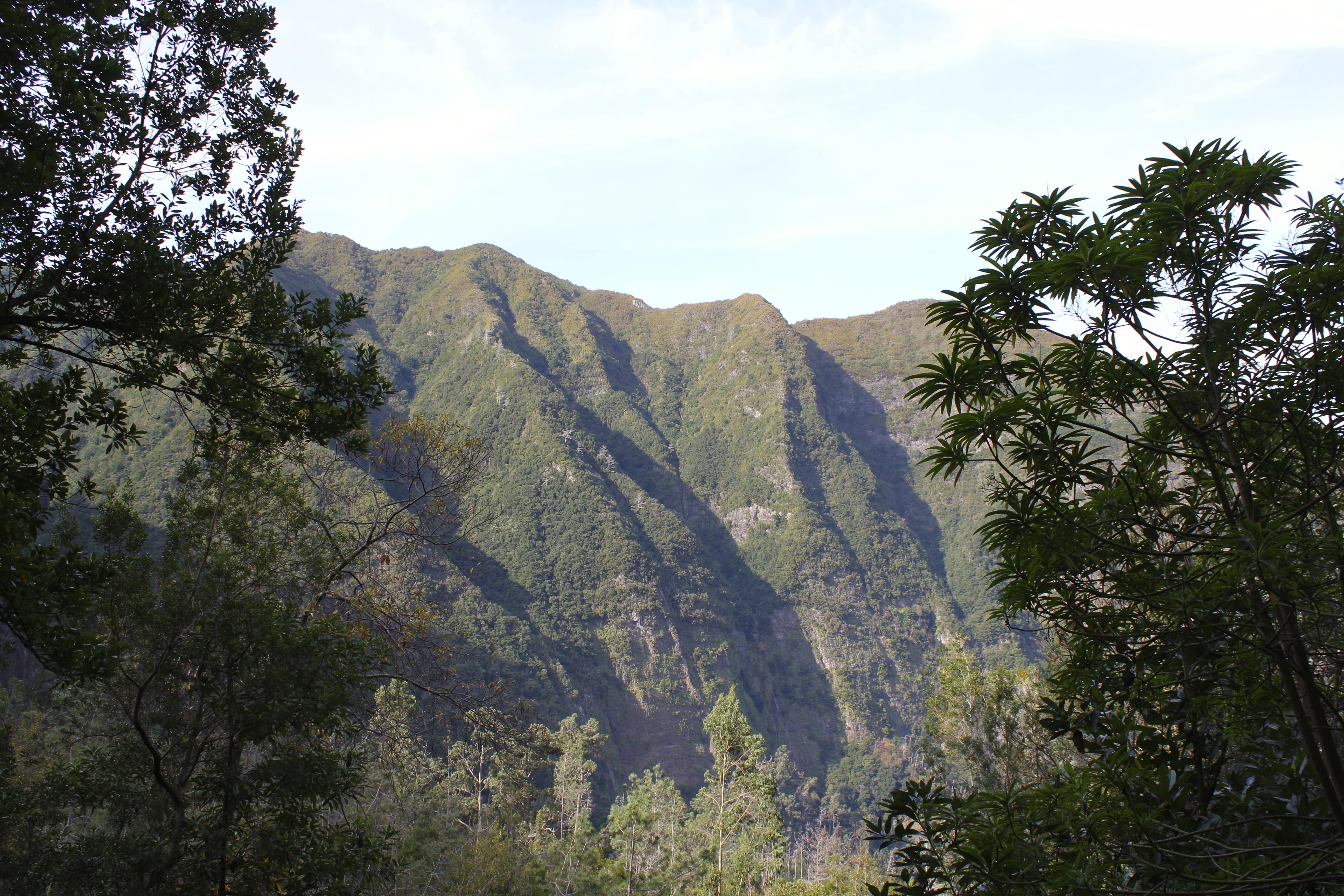 Levada walks, Madeira - Manuel Tours
