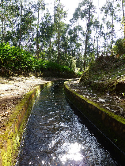 Levada Walks in Madeira - Manuel Tours