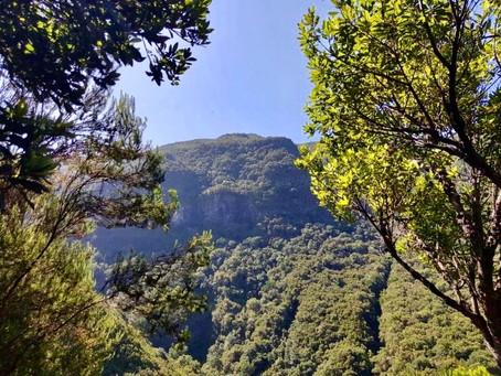 Madeira's most popular Levada walk...