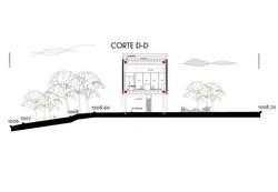 CORTE D-D