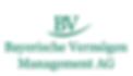 2018 Logo BVM.png