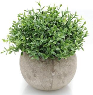 Mini Plastic Artificial Plants