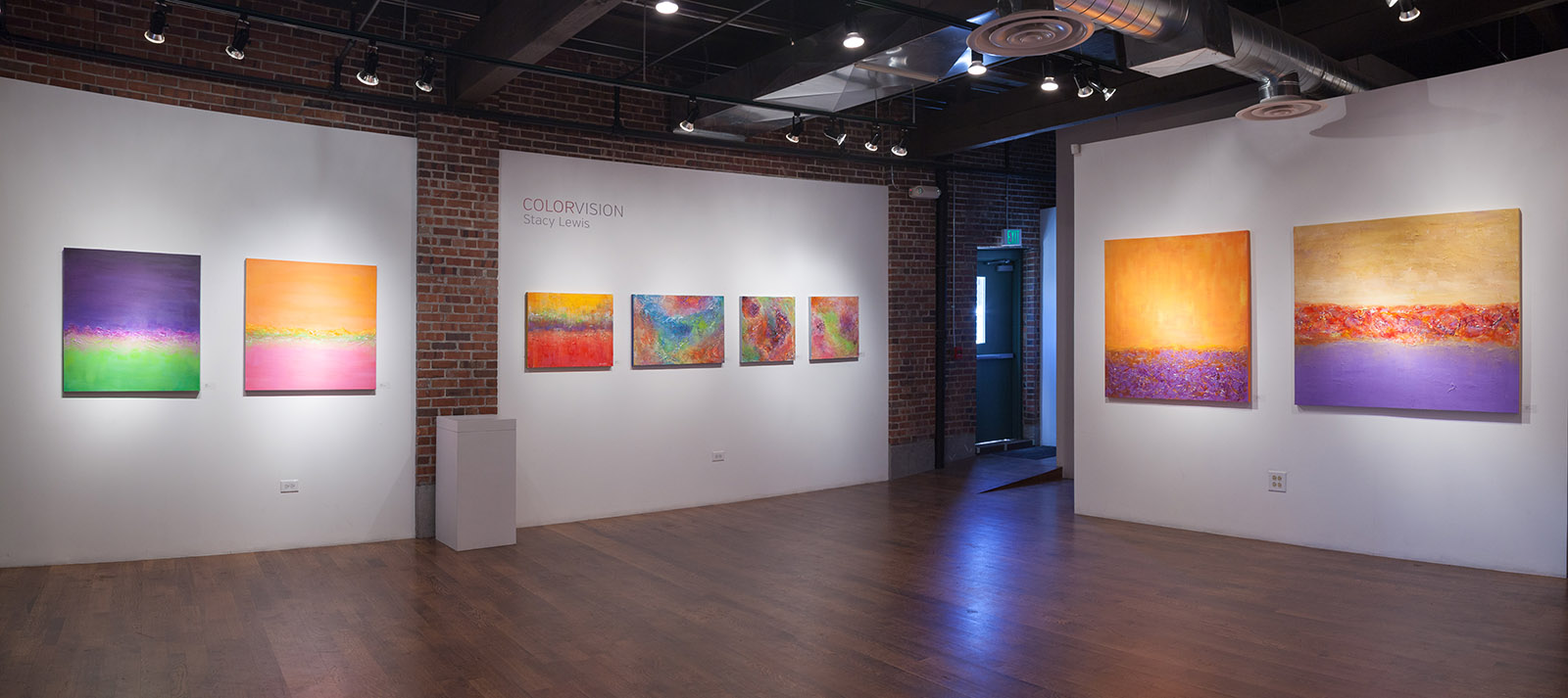 ColorVision Solo Exhibition