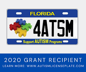 Autism License Plate Social Media Graphi