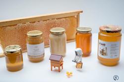 la ruche piquet-2602