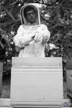 la ruche piquet-1757