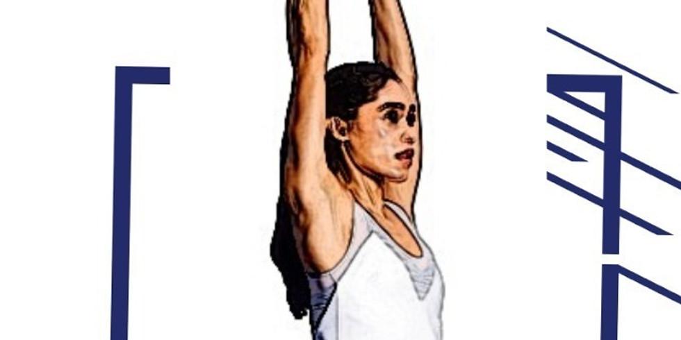 Fitness Webinar