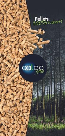Caleo1.jpg