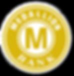 medallion%20bank%20financing_edited.png