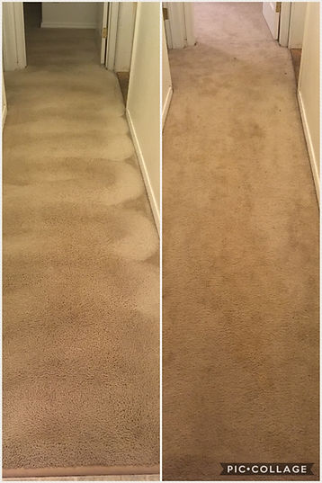 clean carpet, fairbanks, stains, rugs, stain reoval