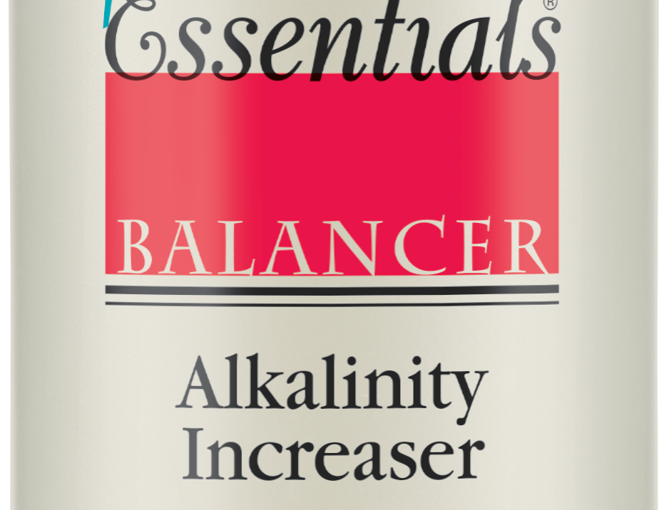 Spa Essentials Balancer Alkalinity Increaser