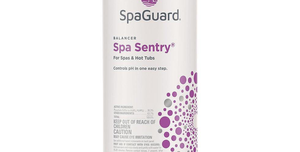 SpaGuard Spa Sentry®*