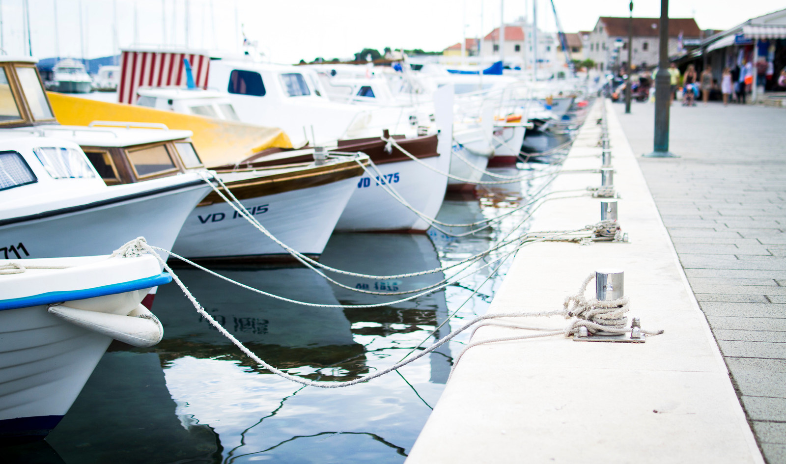 Canva - Sea Dock with Boats Waiting (1).