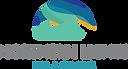 SATR Northern Lights Imaging Logo CLR.png