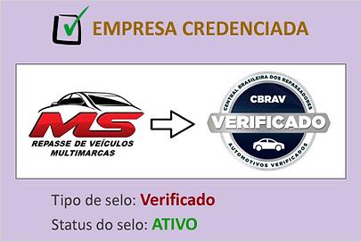 empresa_credenciada_ms_repasses.png