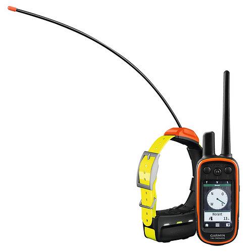 Garmin Alpha 100/T5 Honden GPS tracking
