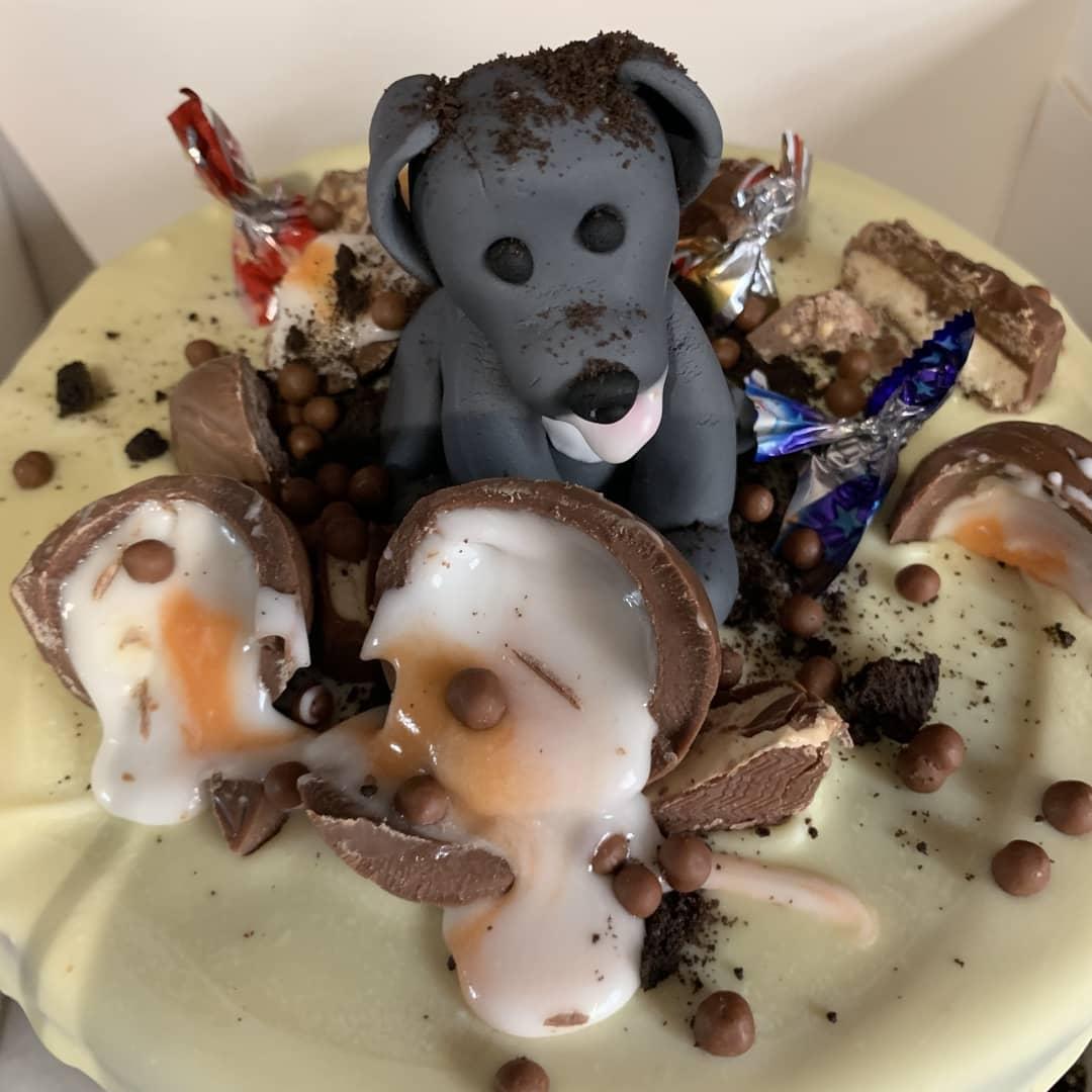 naughty puppy drip cake