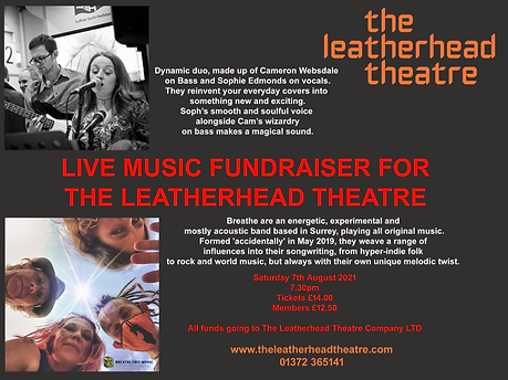 Live Music Fundrasing Concert for The Leatherhead Theatre