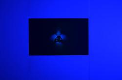 Phone Light (Installation view)