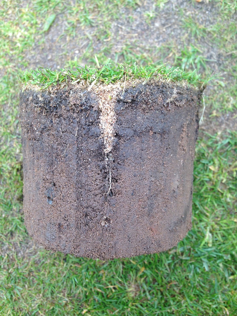 Sand channel after hollow core aeration and top-dressing
