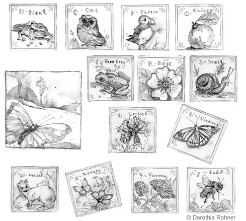 Nature Alphabet Sketches N-Z