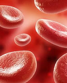 תמונת דם.jpg
