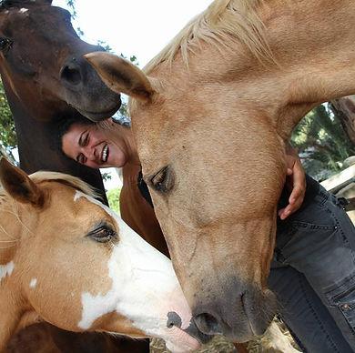משולש סוסות.jpg