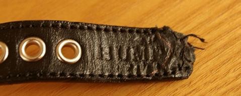 バブーシュカの首輪