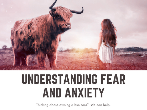 UNDERSTANDING FEAR AND ANXIETY