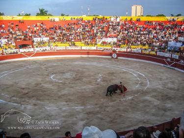Plaza de Toros de, Mérida, Mexico