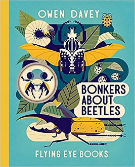 Bonkers About Beetles (Owen Davey Animals Series) Hardcover