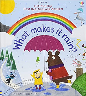 What Makes it Rain (Boardbook)