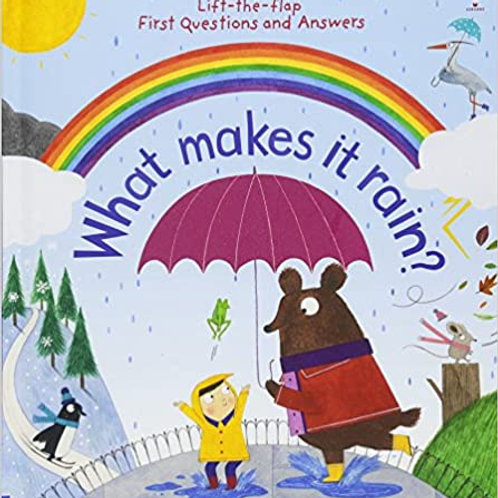 What Makes it Rain (Boardbook)