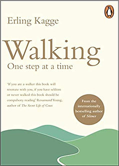 Walking, One Step at a Time