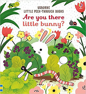 Are You There Little Bunny (Boardbook)