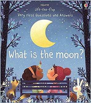 What is the Moon (Boardbook)