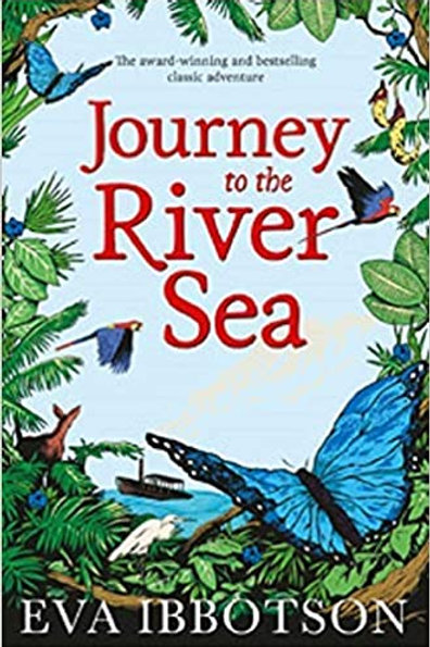 Journey to the River Sea Paperback