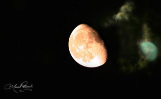 luna 2.jpg