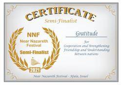 2021_Semi-Finalist