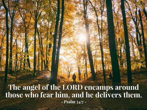THE FEAR OF THE LORD MUST RETURN!