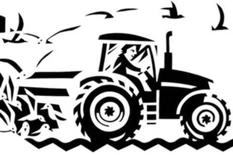 Traktor mit Möwen M
