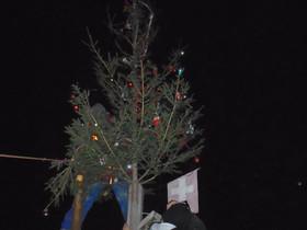 Karácsonyfánk Kiskapudon