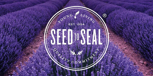 seed to seal pic.jpg