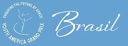YAGP LOGObrasil2branco:azul.jpg