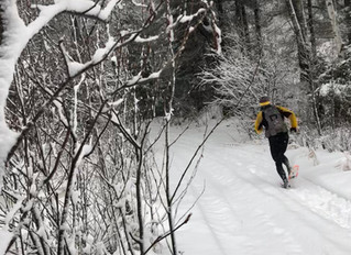 Land O' Lakes Winter Ultra, March 2020 - A Sneak Peak at Trails in the Area