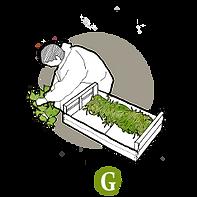 Logo Les Anges Gardins.png